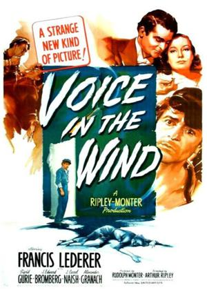 Voice in the Wind Online DVD Rental