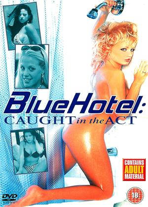 Rent Blue Hotel: Caught in the Act Online DVD Rental