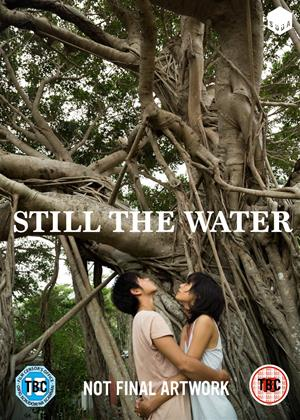 Still the Water Online DVD Rental