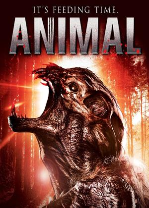 Animal Online DVD Rental
