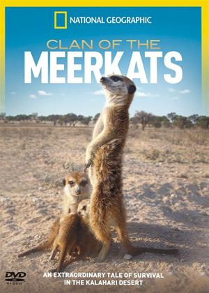 National Geographic: Clan of the Meerkats Online DVD Rental