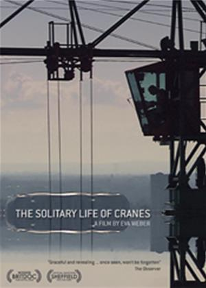 Rent The Solitary Life of Cranes Online DVD Rental
