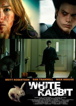 White Rabbit Online DVD Rental