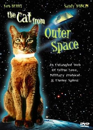 The Cat from Outer Space Online DVD Rental