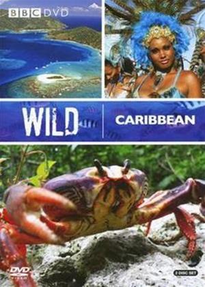 Wild Caribbean Online DVD Rental