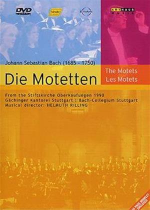 Rent Bach: The Motets Online DVD Rental
