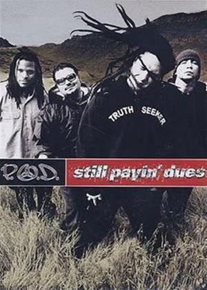 Rent P.O.D.: Still Payin' Dues Online DVD Rental