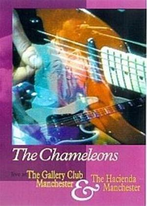 Rent The Chameleons: Live at the Gallery Club Online DVD Rental