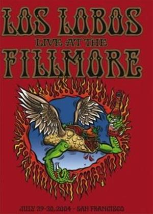 Los Lobos: Live at the Fillmore Online DVD Rental