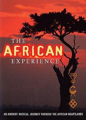 Rent African Experience Online DVD Rental