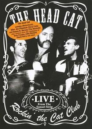 Rent The Head Cat: Rockin' at the Cat Club Online DVD Rental