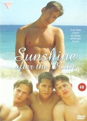Rent Sunshine After the Rain Online DVD Rental