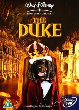 Rent Duke Online DVD Rental