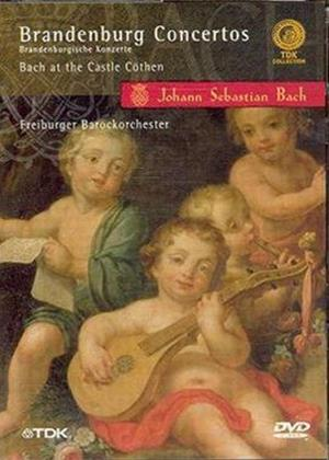 Rent Bach: Brandenburg Concertos Online DVD Rental