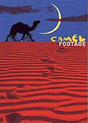 Rent Camel Footage Online DVD Rental
