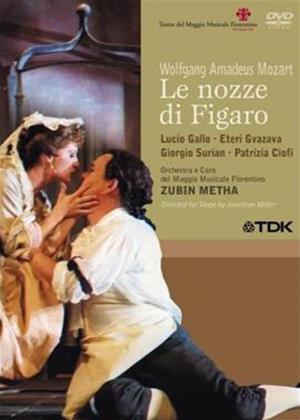 Mozart: Le Nozze Di Figaro: Fiorentino Orchestra Online DVD Rental