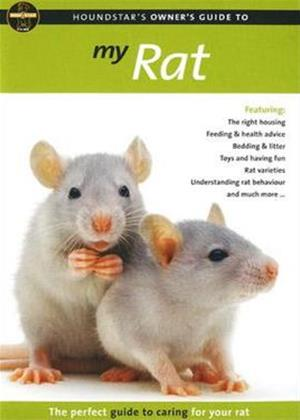 Houndstar's Owner's Guide to My Rat Online DVD Rental