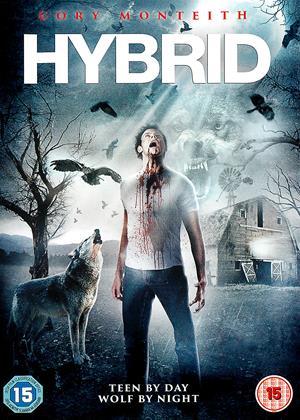 Hyrbid Online DVD Rental