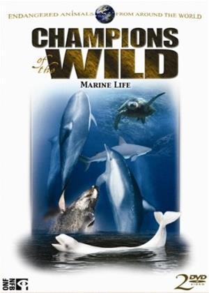 Rent Champions of the Wild: Vol.3 Online DVD Rental