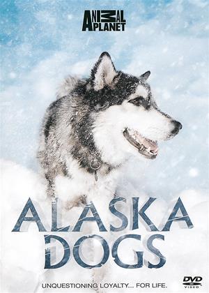 Rent Alaska Dogs Online DVD Rental