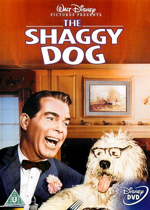 The Shaggy Dog Online DVD Rental
