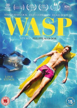 Wasp Online DVD Rental