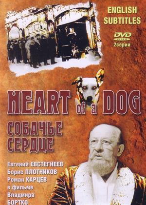 Rent Heart of a Dog (aka Sobachye serdtse) Online DVD Rental