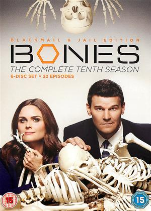 Rent Bones: Series 10 Online DVD Rental