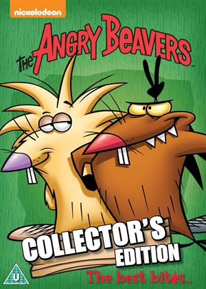 Rent The Angry Beavers: Collection Online DVD Rental