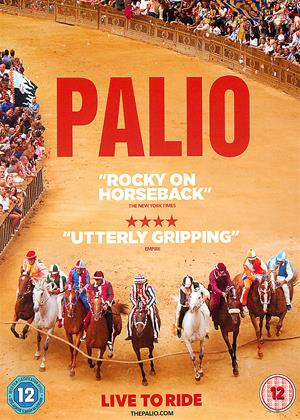Rent Palio Online DVD Rental