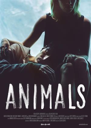 Animals Online DVD Rental