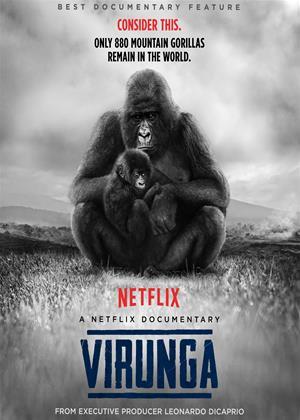 Rent Virunga Online DVD Rental