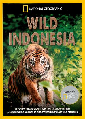 National Geographic: Wild Indonesia Online DVD Rental