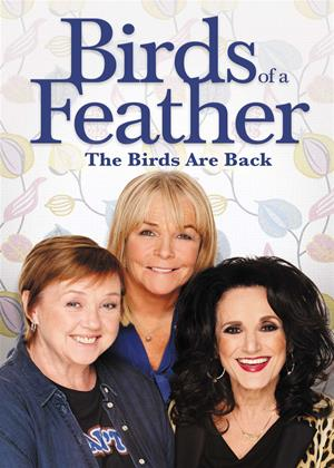 Rent Birds of a Feather: Series 11 Online DVD Rental