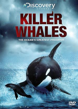 Rent Killer Whales Online DVD Rental