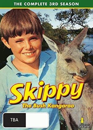 Rent Skippy the Bush Kangaroo: Series 3 Online DVD Rental