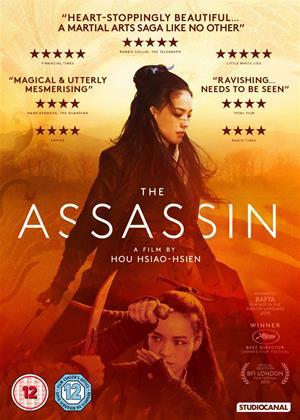 The Assassin Online DVD Rental