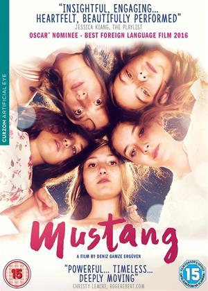 Mustang Online DVD Rental
