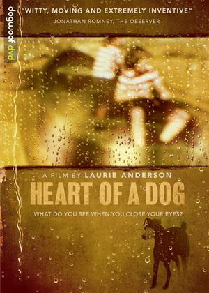 Heart of a Dog Online DVD Rental
