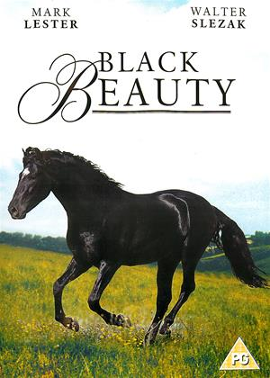 Black Beauty Online DVD Rental