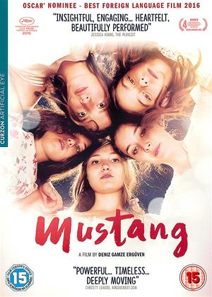 Rent Mustang Online DVD Rental