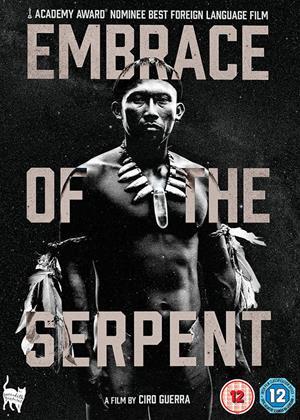 Embrace of the Serpent Online DVD Rental