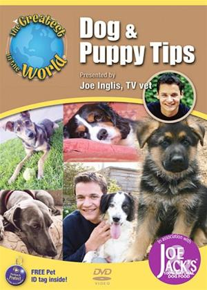The Greatest in the World: Dog and Puppy Tips Online DVD Rental