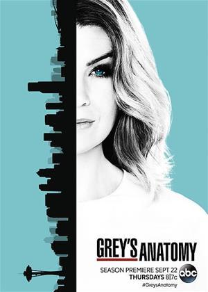 Rent Grey's Anatomy: Series 13 Online DVD Rental