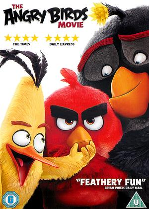 The Angry Birds Movie Online DVD Rental