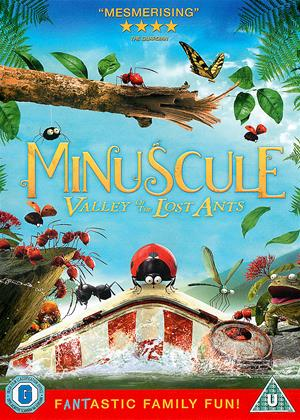 Minuscule: Valley of the Lost Ants Online DVD Rental