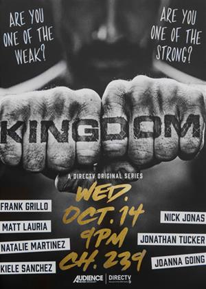 Kingdom: Series 2 Online DVD Rental