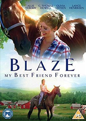 Blaze Online DVD Rental