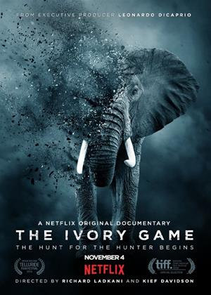 The Ivory Game Online DVD Rental