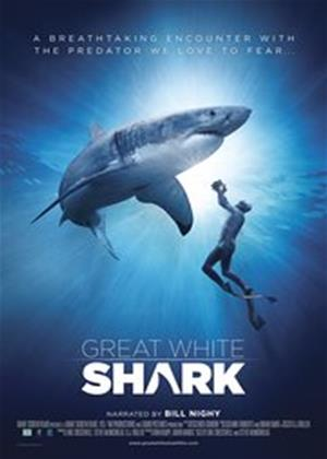 Great White Shark Online DVD Rental